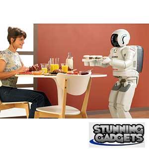 Gadget pick 7 - Robotic Butler