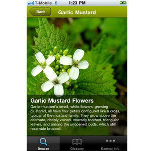 Smartphone Survival Apps - Wild Edibles